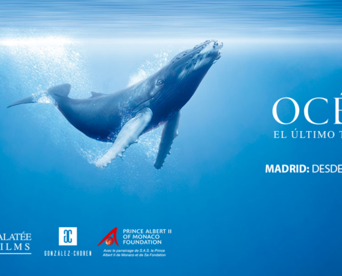 Océanos: la exposición. El último territorio salvaje.