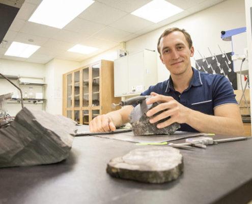 hallados restos de árboles en la antártida