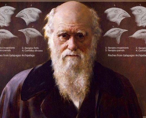 Teoría de la Evolución de Darwin